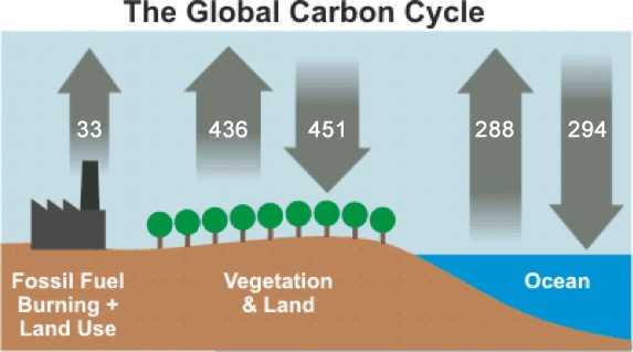 Co Emissions By Humans Vs Nature